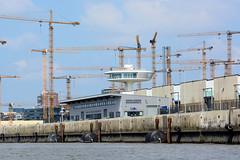 Fotos aus dem Hamburger Stadtteil Hafencity; Cruise Center Baakenhöft, dahinter Baukräne am Strandkai.