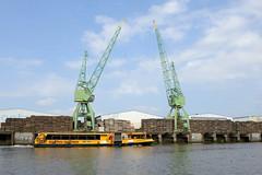 Hafenkräne der Fa. Kampnagel am Ufer vom Reiherstieg in Hamburg Steinwerder.
