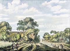 Ländliche Umgebung mit Bauernhaus, Feldern und Kühen am Lübscher Baum (Lübecker Schlagbaum) beim Landwehr, ca. 1800.