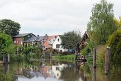 Dalben als Bootsanleger am Estufer bei Estebrügge. Wohnhäuser und Vorgärten direkt am Esteufer. Fast jedes Haus hat einen Bootsanleger für ein kleines Motorboot oder Segelschiff, um damit auf der Elbe zu segeln. Alte Holzdalben sind Zeugnis des frühe