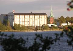 Blick über den Holzhafen und die alte Elbe in Hamburg Moorfleet  - auf der gegenüber liegendes Seite der Moorfleeter Deich in der Abendsonnen. Rechts davon die Moorfleeter  St. Nikolaikirche.