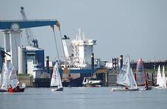 Blick zum Estesperrwerk, Regatta von Segelbooten; die Elbfähre am Anleger Neuenfelde. Über das Sperrwerk führt eine Klappbrücke, die bei Bedarf hochgefahren werden kann. Hinter dem Elbdeich liegt die Sietas Werft mit der gewaltigen Krananlage und kle