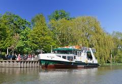 Fähre am Anleger Altes Fährhaus von Hamburg Cranz bei Hochwasser. Fahrgäste stehen am Anleger und warten darauf die Personenfähre besteigen zu können. Im Hintergrund frisches Frühlingsgün an den Bäumen am Ufer der Este.