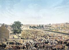 Altona-Hamburger Viehmarkt  an der Bleicherstraße in Altona (vor 1863) - rechts Bleichen und Gärten mit Wäsche.