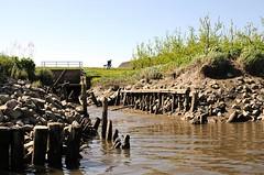Entwässerungskanal zur Este bei Ebbe - Uferbefestigung aus Holz und Steinen. Zufluss eines Wetterns in die Este - die Kanäle dienen zur Entwässerung der Marschlandschaft.