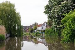 Das Sportbootrevier der Este führt entlang der Obstfelder und kleinen Ortschaften, deren Häuser direkt am Flussufer liegen. Zweige der Weiden hängen über den Flusslauf - mächtige blühende Kastanien stehen am Ufer.