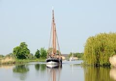Historischer Frachtsegler HERMINE auf der Este. Der Ewer fährt unter Motor flussabwärts - die Zweige einer Weide hängen am Flussufer weit über das Wasser. Der Ewer WILHELMINE ist ein flachbodiger Frachtsegler, der die Waren aus dem Alten Land auf die