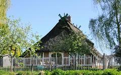 Fachwerkhaus mit Staketenzaun - blühender Baum im Garten.